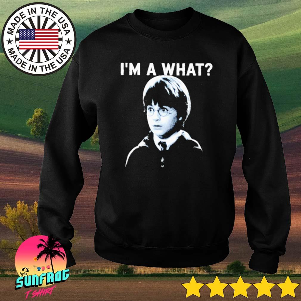 I'm a what Harry Potter s Sweater