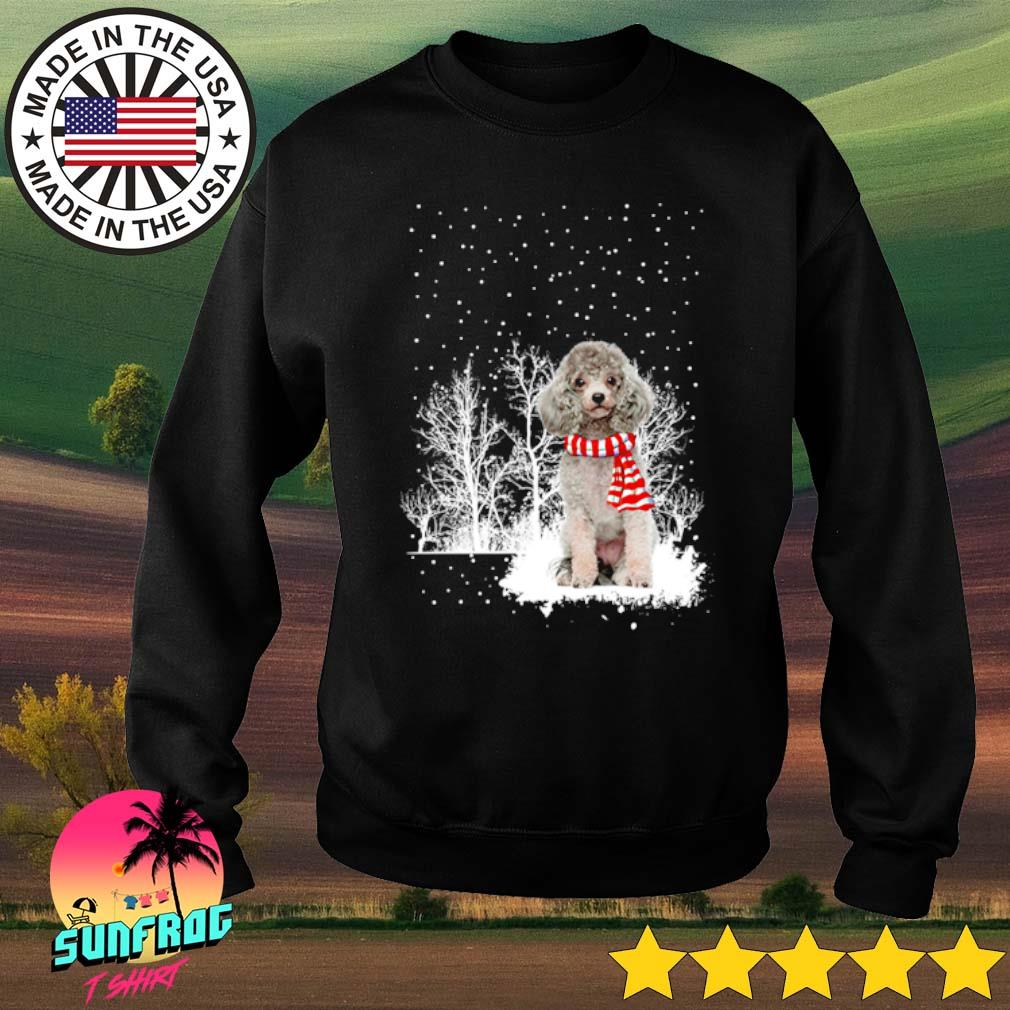 Poodle wearing red scarf winter Christmas sweater